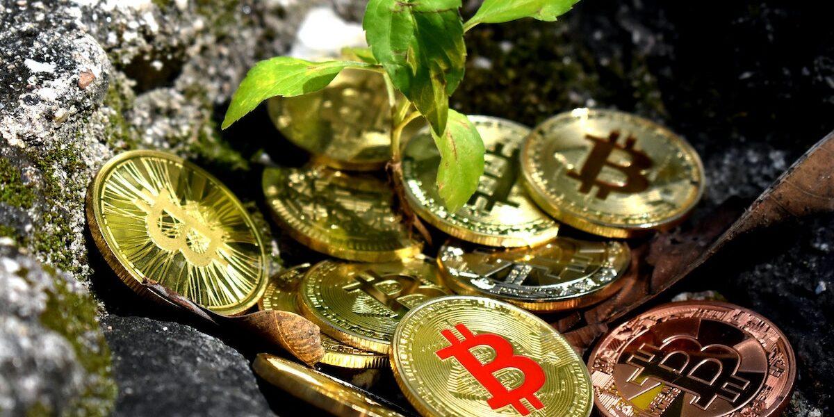 Bitcoin is not environmentally friendly