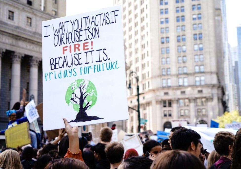 Fridays For Future poster in a global climate strike
