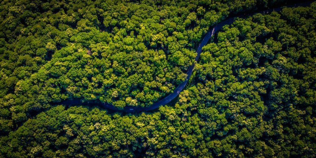 green sustainable future